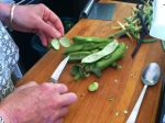 removing the beans from the shuck